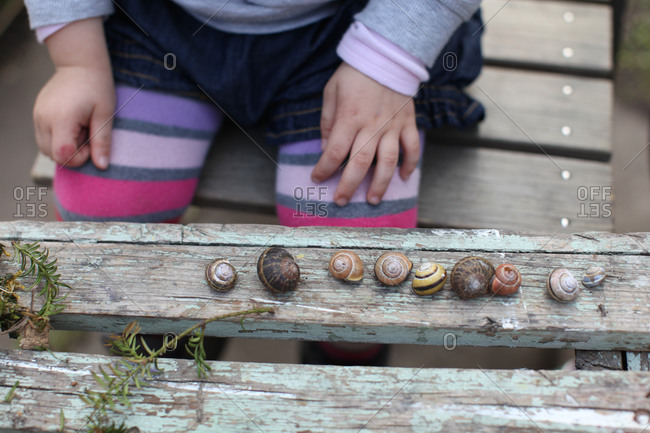 Toddler child with collection of bugs
