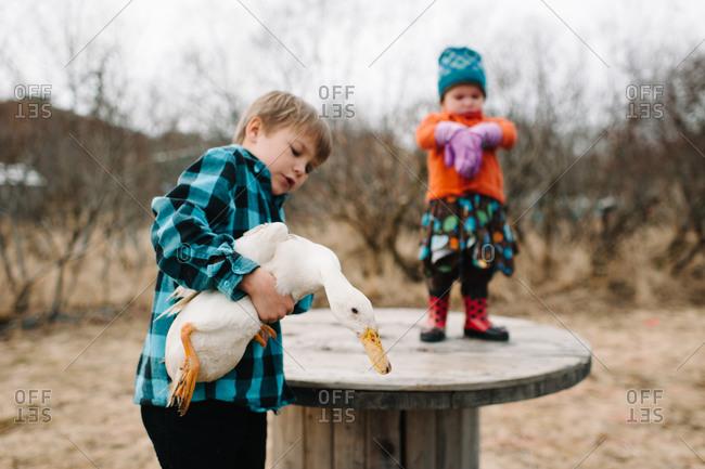 Boy holding a goose