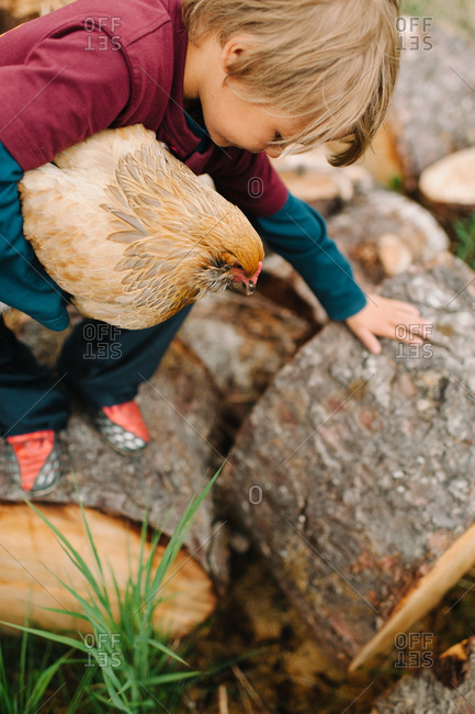 Boy climbing on logs with a chicken