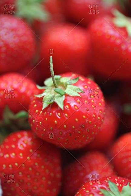 A pile of strawberries - Offset