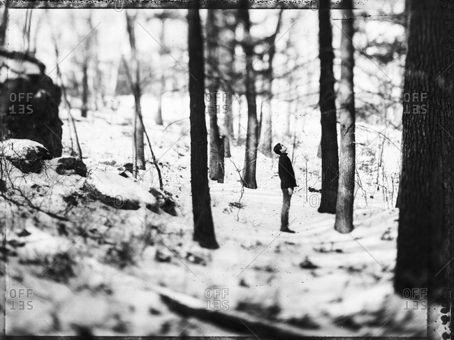 Man standing in a snowy woods in New England, USA