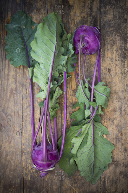 Two blue turnip cabbages, Brassica oleracea var. gongylodes L. on dark wood, elevated view