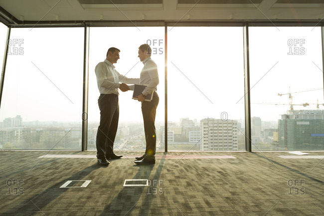 Two businessmen in sunny office shaking hands