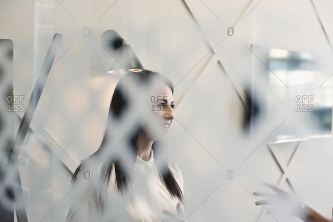 Businesswomen seen through glass talking