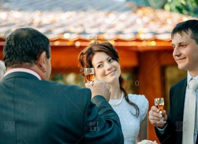 Guests toasting at a wedding reception