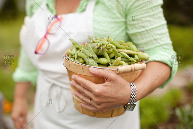 Woman holding a basket of whole green peas