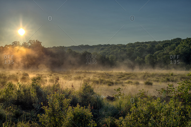 Morning sun rising over marsh and forest landscape