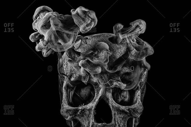 Skull facing forward with smoke