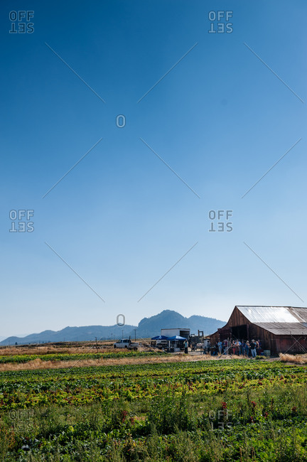 Barn dinner on a farm in Reno Tahoe, USA