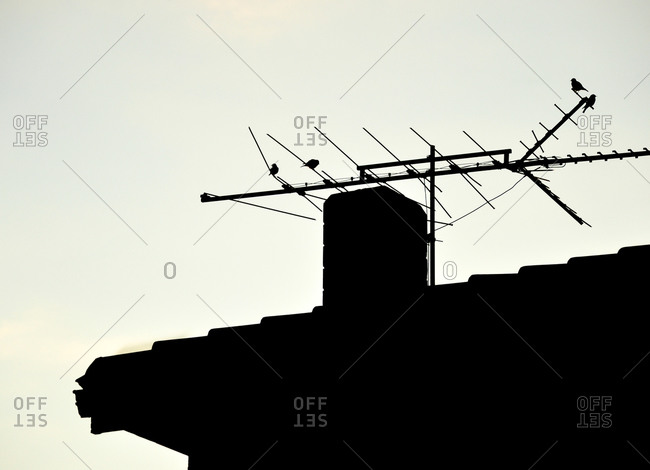 Silhouette of birds perched on an antenna