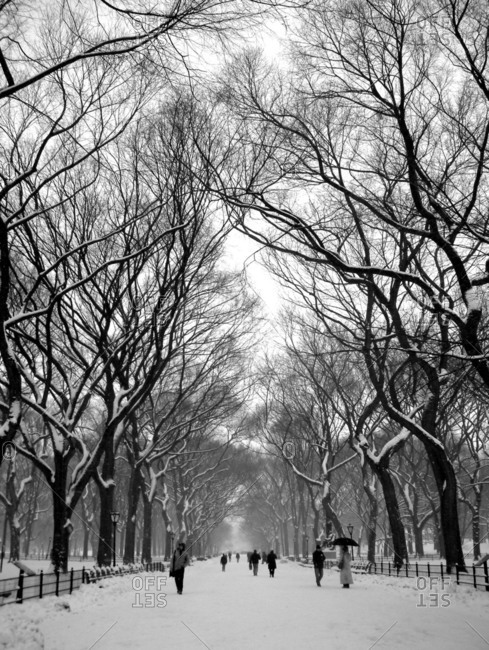 People walking in Central Park, New York City