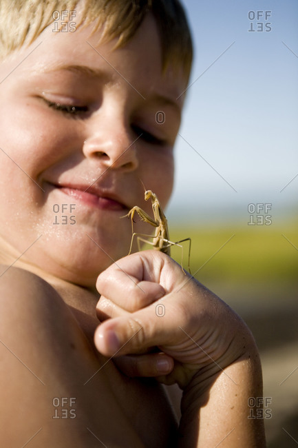 A young boy with a praying mantis on his hand.