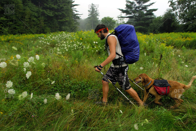 USA - August 23, 2007: Man hiking with a golden retriever in the Appalachian Trail