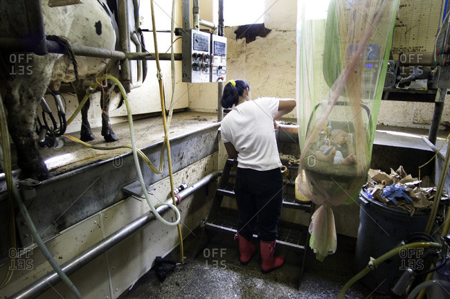 Vermont, USA - August 12, 2008: Mexican migrant worker on a dairy farm with baby
