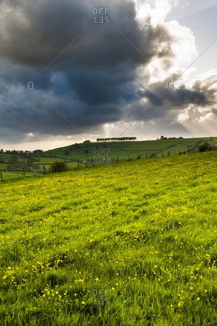 Countryside around Bath - Offset Collection