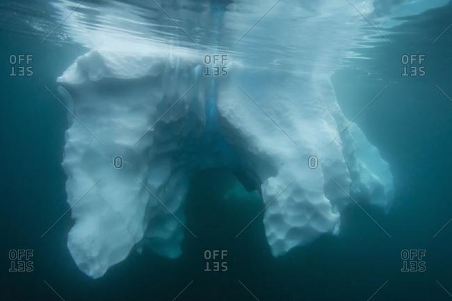 Underwater view of glacial ice near Wiencke Island