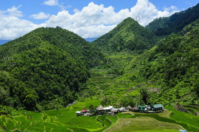 Bangaan in the rice terraces of Banaue