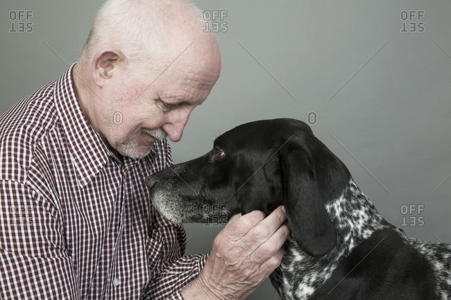 Portrait of senior man with his German Shorthaired Pointer in front of grey background