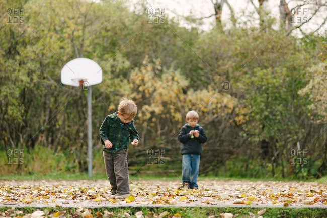 Two brothers collecting dry leaves