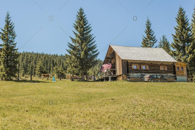Wooden house in alpine meadow