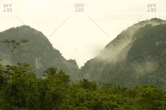 Morning mists rise from the canyons and ravines of the Maya Mountains in western Belize