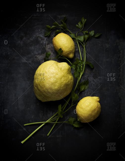 Lemons and a Bergamot orange with parsley