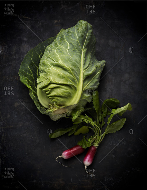 Pointy headed cabbage and radishes
