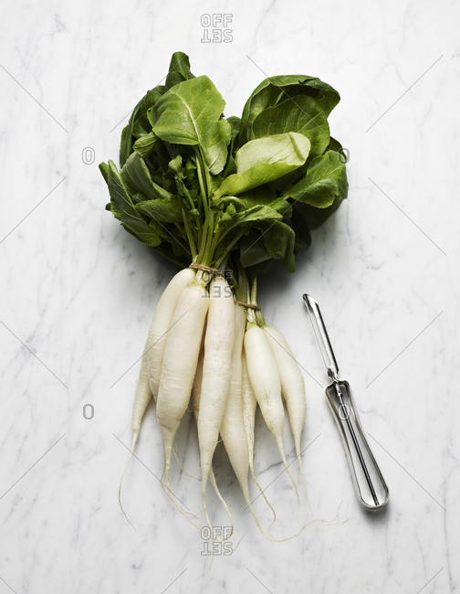 White icicle radish bunches on marble surface