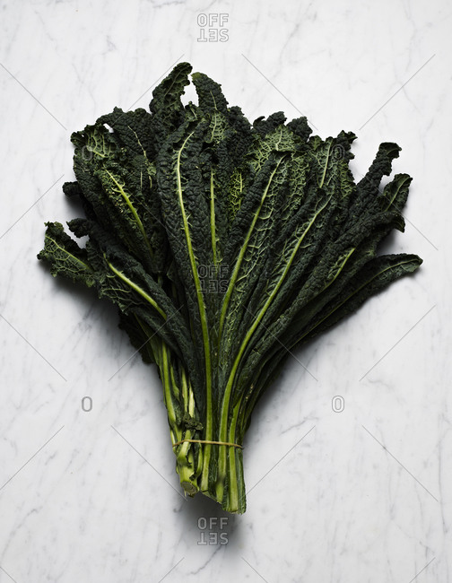 Bunch of lacinato kale on marble counter
