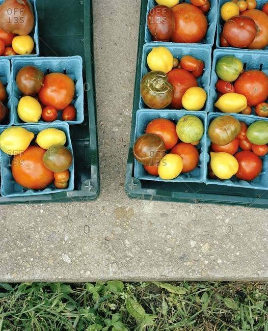 Top view of heirloom tomatoes in crates