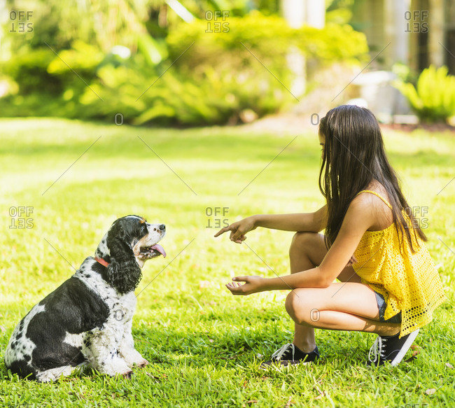 Girl teaching dog tricks