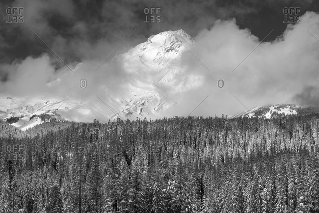View of MT hood - Offset