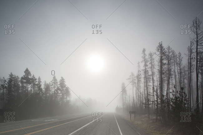 View of a misty road
