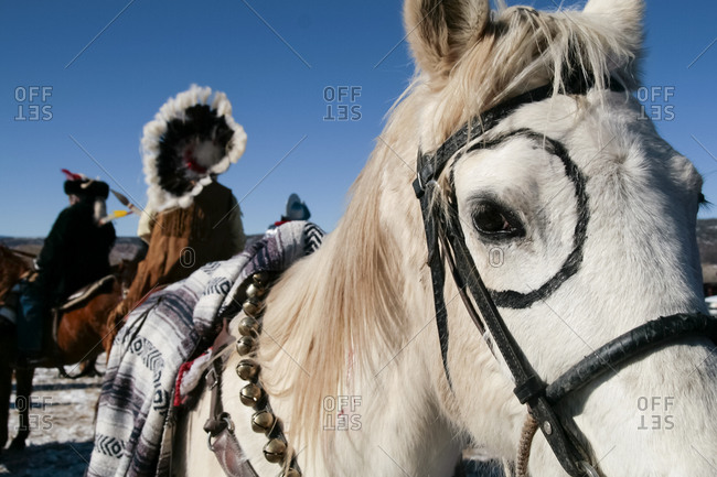 Alcalde, New Mexico, USA - December 27, 2008: Decorated horse at an American Indian celebration