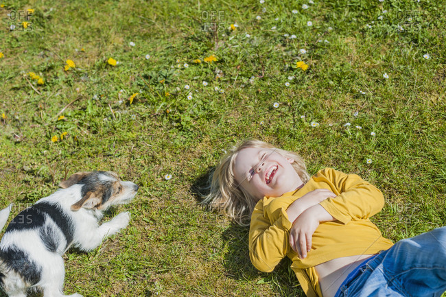 Boy playing with Jack Russel Terrier puppy in garden