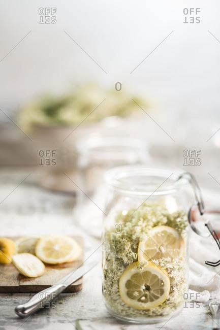 Preserving jar of elderflowers, Sambucus nigra, lemon slices and sugar for making elderflower cordial
