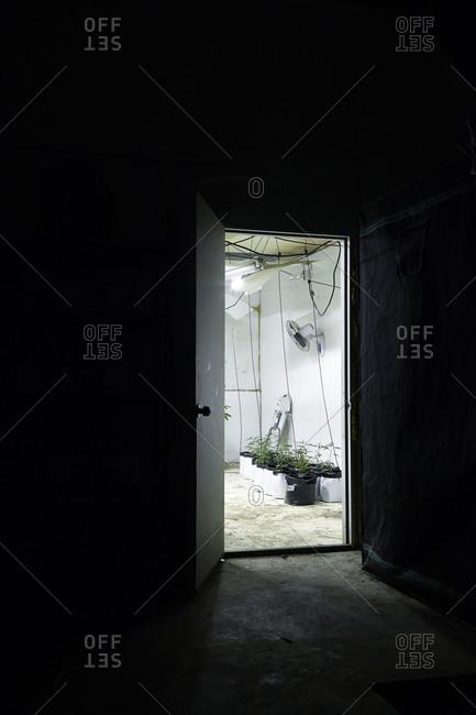 Entrance of a marijuana grow house