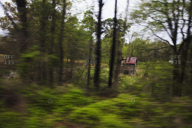 Shack in a forest in North Carolina