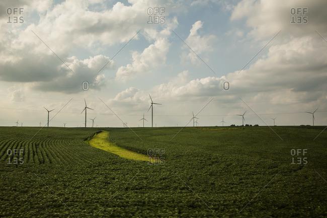 Wind turbines in Illinois, USA