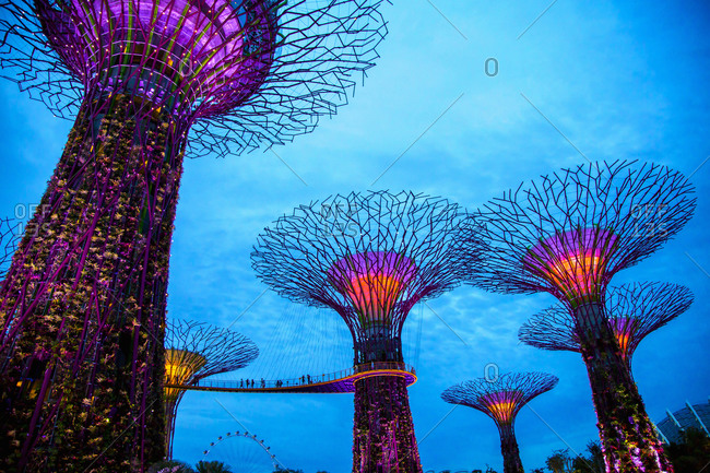 Februray 23, 2013: Electric supertrees lit up at night, Singapore, Republic of Singapore