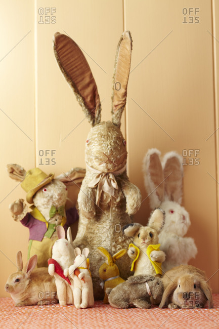 Collection of plush stuffed rabbits