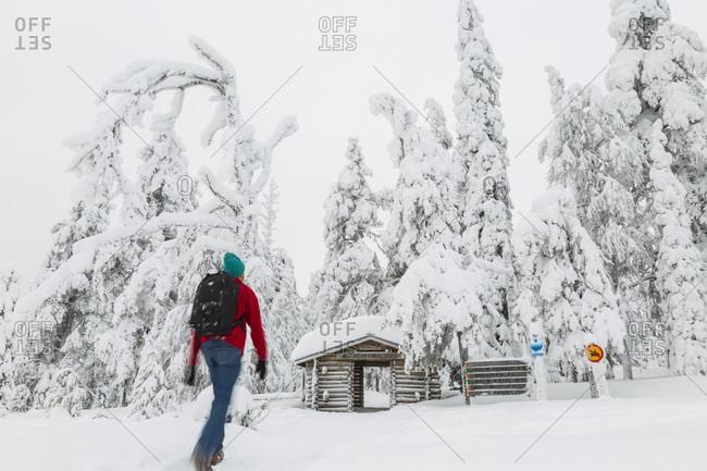 Man heading towards the entrance to Riisitunturi National Park, Finland