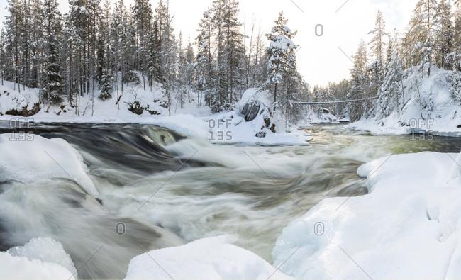 Myllykoski rapids in Oulankajoki National Park, Finland