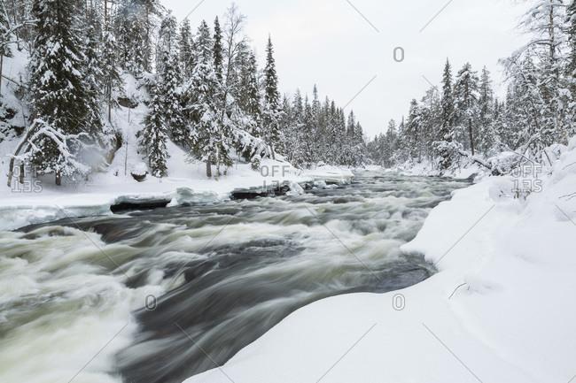 Rapid river in Oulankajoki National Park, Finland