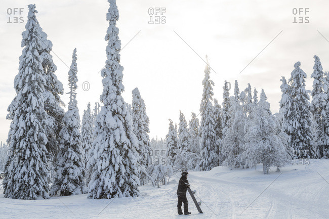 Snowboarder in Rukatunturi ski center, Lapland