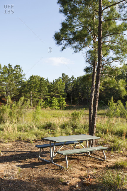 Picnic table and benches outdoors
