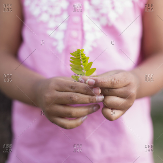 A child, a girl in a pink shirt holding a small fern leaf in her hands