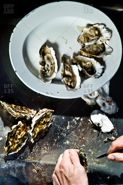 Close up of man halving fresh oysters