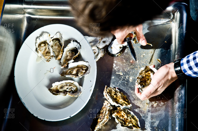 High angle view of halving raw oysters