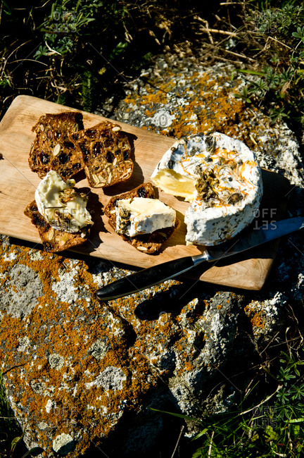 Pierce Point cheese, rolled in coastal herbs and dried wildflowers